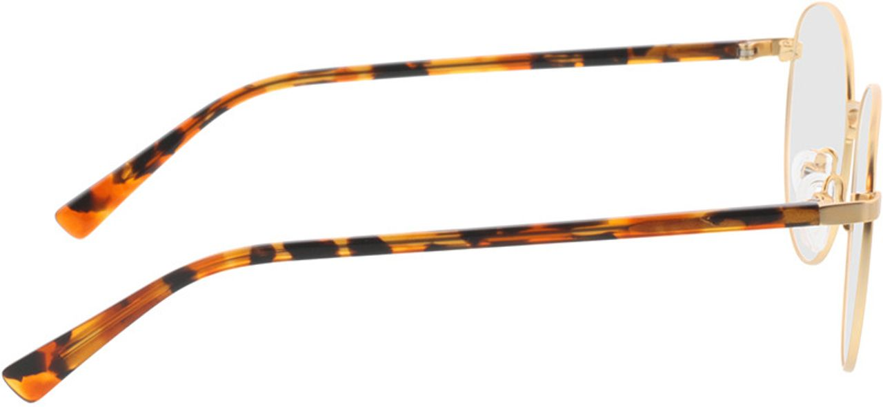 Picture of glasses model Kronos-gold/havana in angle 90